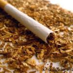 Состав сигареты и табачного дыма. Из чего сделаны сигареты