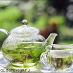 Польза, вред, свойства зеленого чая. Давление и зеленый чай