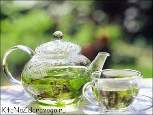 как зеленый чай сжигает жир