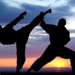 Основные виды единоборств (боевых искусств)